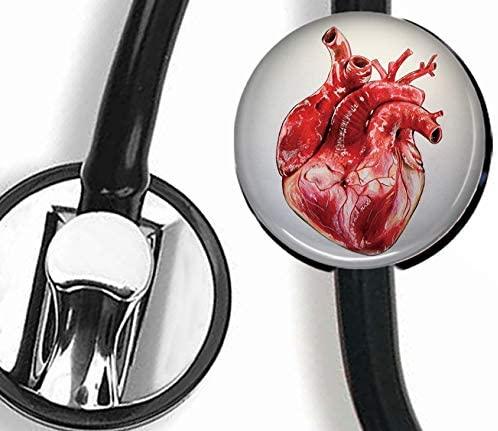 Heart Stethoscope Tag Personalized,Nurse Doctor Stethoscope ID Tag Customized, Medical Stethoscope Name Tag