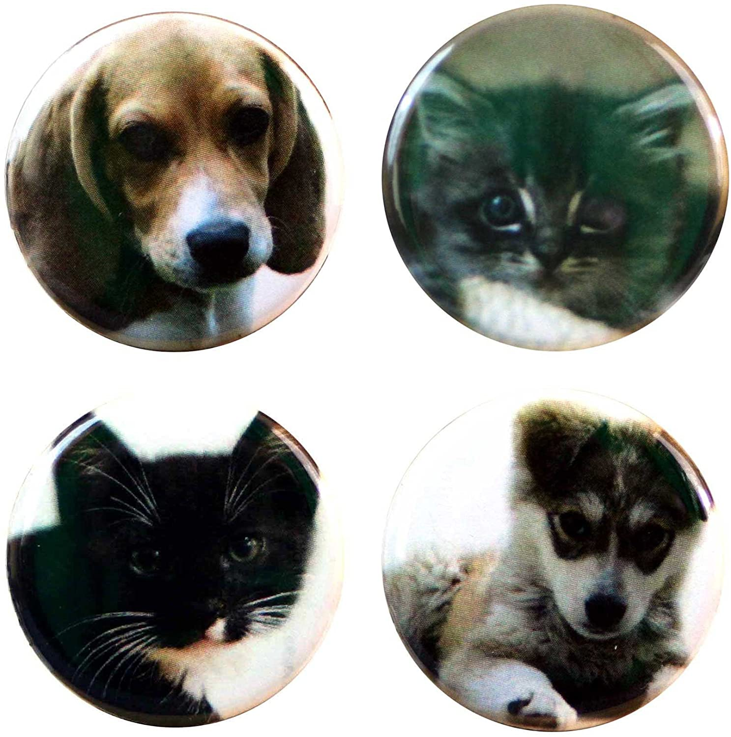 Buttonsmith Puppies and Kittens 1.25 Refrigerator Magnet Set - Made in the USA