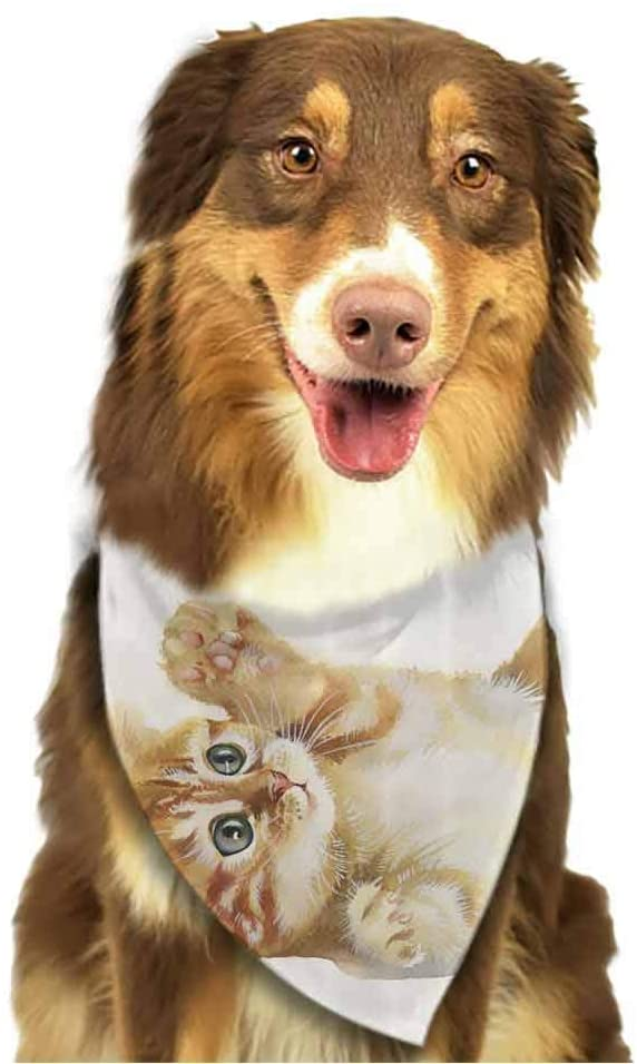 hobeauty home Dog Bandana Cat in Printing Dog Kerchief for Small to Large Dogs