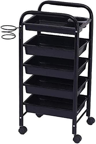 QNN Multifunctional Trolley with Wheels, Equipment with Hair Dryer Stand, Trolley Tool, with 5 Drawers, Medical, Spa, Tattoo Essentials,Black