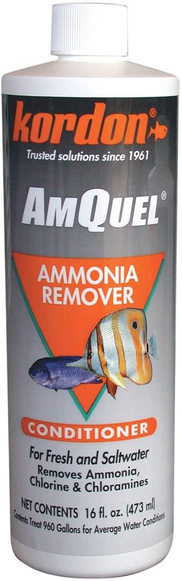Kordon #31256 AmQuel- Ammonia Detoxifier for Aquarium, 16-Ounce