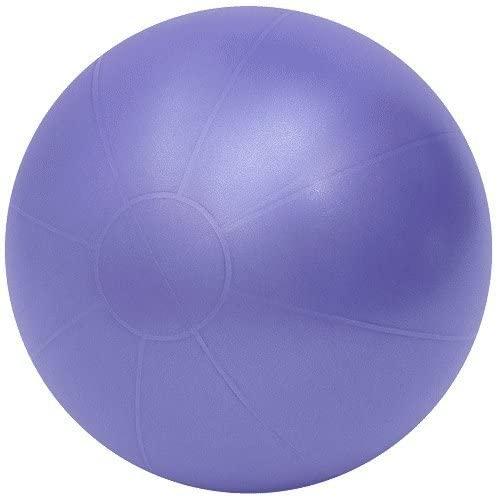 TheraGear Swiss Ball Pro