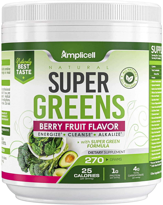 Super Greens - 270g Super Food Green Juice Organic Blend - Fruit and Vegetable Powder Supplement w/Probiotics - Non-GMO Organic Plant Food Green Drink Mix - Premium Superfood Veggie Juice Cleanse
