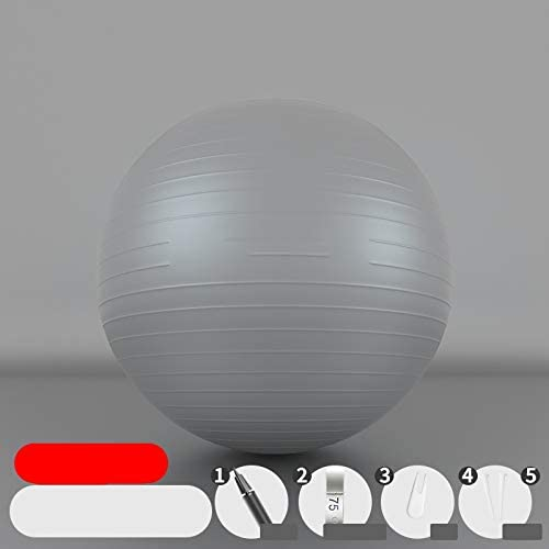 WLZS Curve Exercise Ball, 55cm 65cm 75cm Yoga Ball, Thickened Non-Slip Balance Ball for Pilates Childbirth Therapy Physical Therapy Home Gym Office Ball Chair with Rapid Pump Achieve Sexy