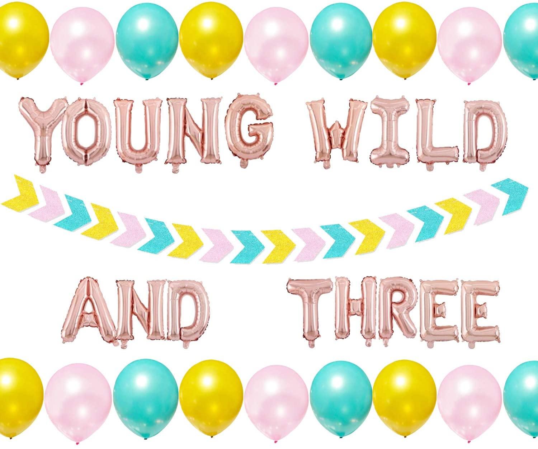 Young Wild and Three Decorations Girl Boy, Young Wild and Three Party Supplies Banner for Wild Three Boho Tribal 3rd Birthday, Third 3 Year Old Birthday Decor Favors, Arrow Garland Safari Balloons