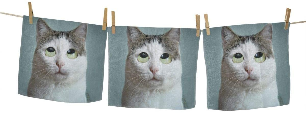 nobrand Funny Cat Roll Eyes Washcloth Towel Set Face Cloths Bulk Soft Kids Bath Washcloths Wash Cloths for Bathroom Hotel Spa Body Kitchen Multi-Purpose Fingertip Towels Square