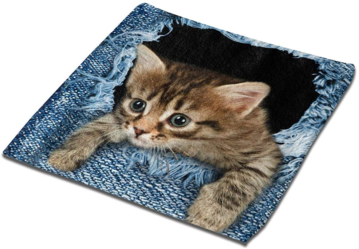 Cute Cat Square Washcloths Face Wash Cloth Fingertip Towel Rags Soft Merch Gift and Absorbent 13 x 13 inches