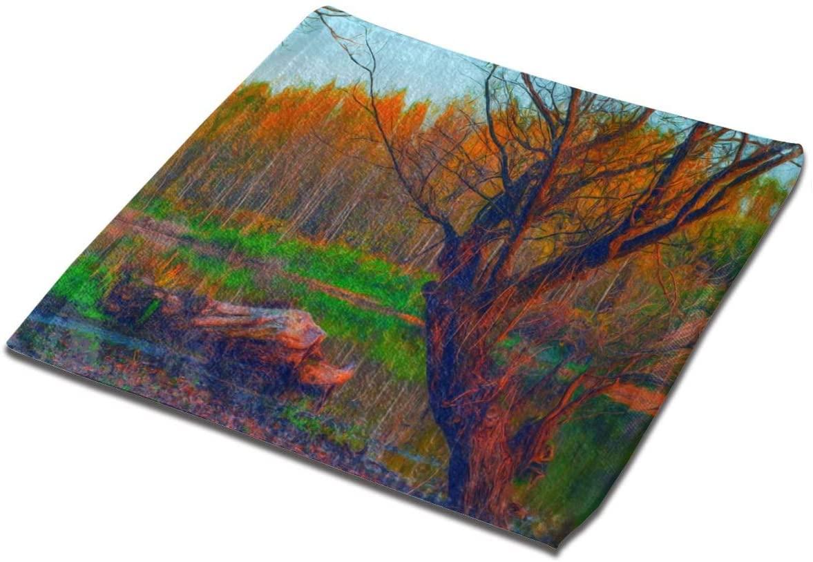nobrand Landscape Painting Showing Forest On Gloomy Autumn Day Washcloth Towel Set Face Cloths Bulk Soft Kids Bath Washcloths Wash Cloths for Bathroom Hotel Spa Body Kitchen Fingertip Towels Square