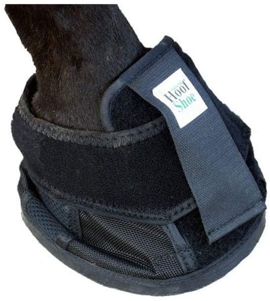 Intrepid International Penn Equine Natural Hoof Shoe
