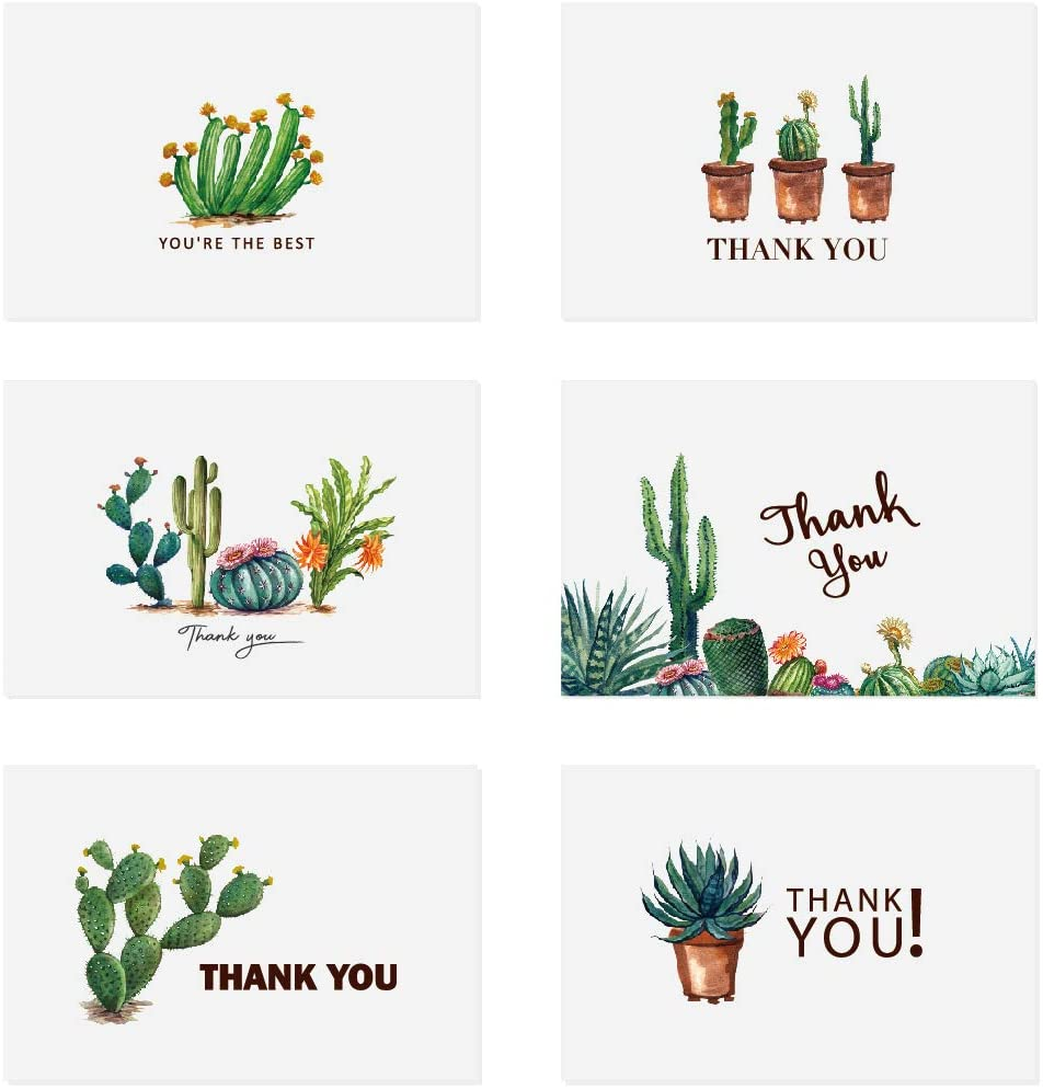 Thank You Cards 36 Bulk Blank Folded Watercolor Cactus Thank You Notes With Self Seal Envelopes - 6 Design, 4 x 6 inch - Perfect for Wedding, Bridal Party, Baby Shower, Graduation,Business,Friends