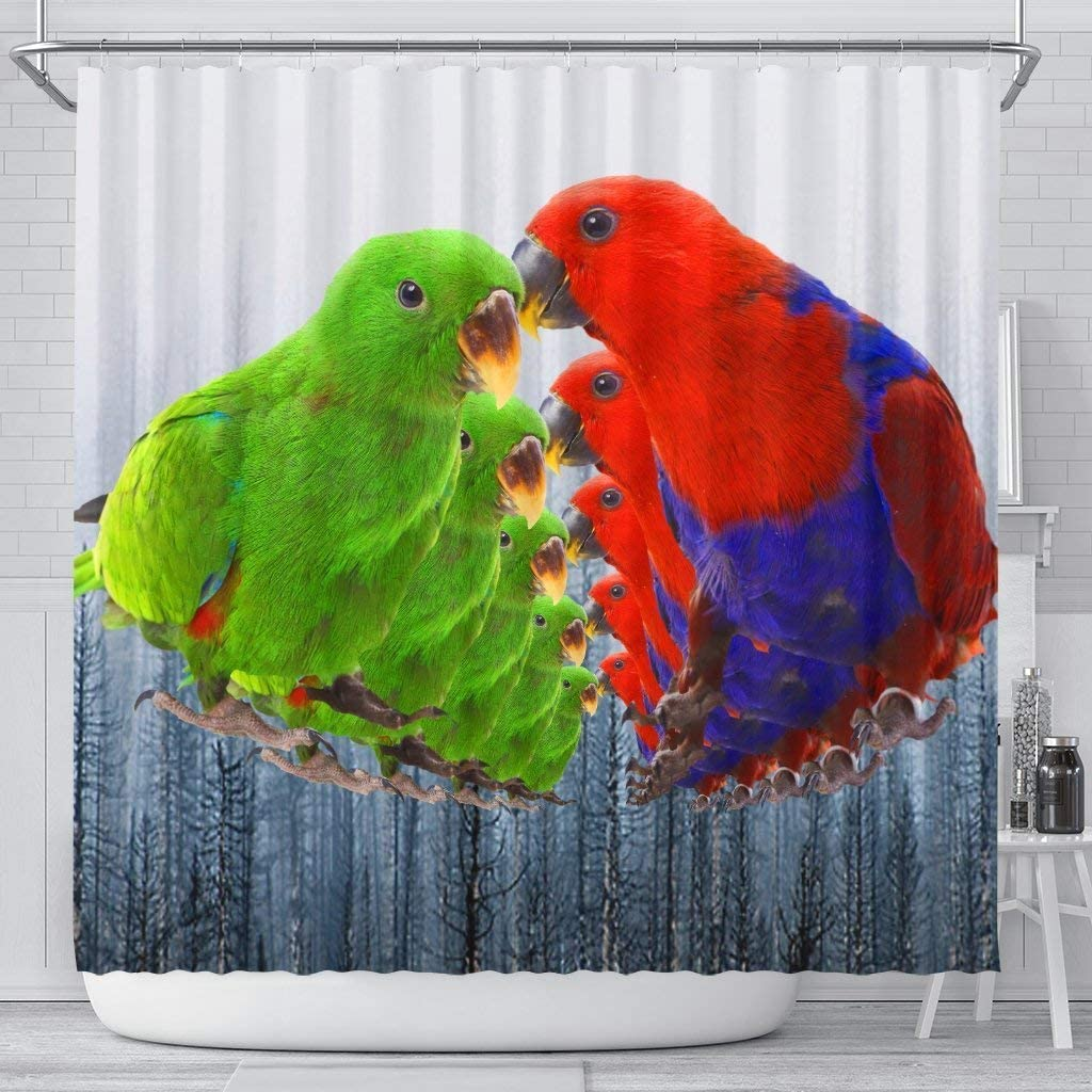 Paws With Attitude Eclectus Parrot Print Shower Curtains