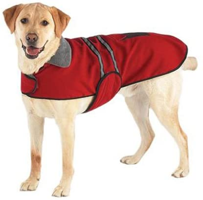 Casual Canine Reflective Jacket for Dogs, 8