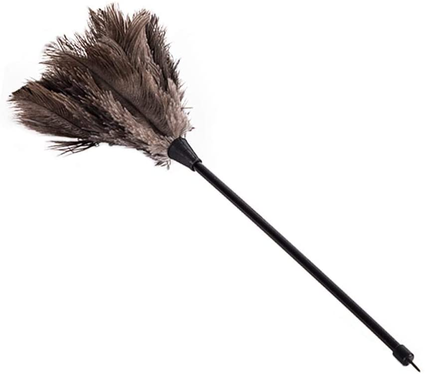 Mini Dust Duster Ostrich Soft Touch Feather Duster Delicate Comfortable