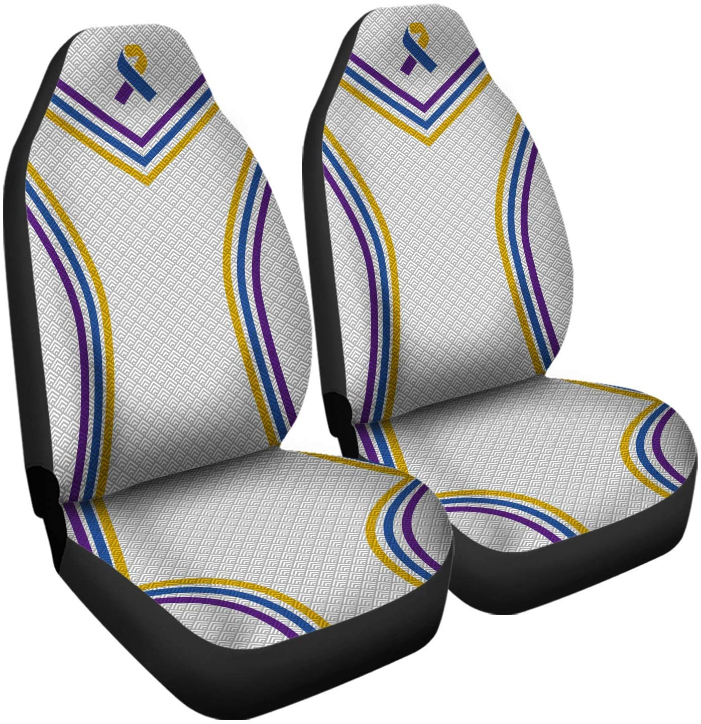 Bladder Cancer Awareness Car Seat Cover 2 Piece Front Universal Fit