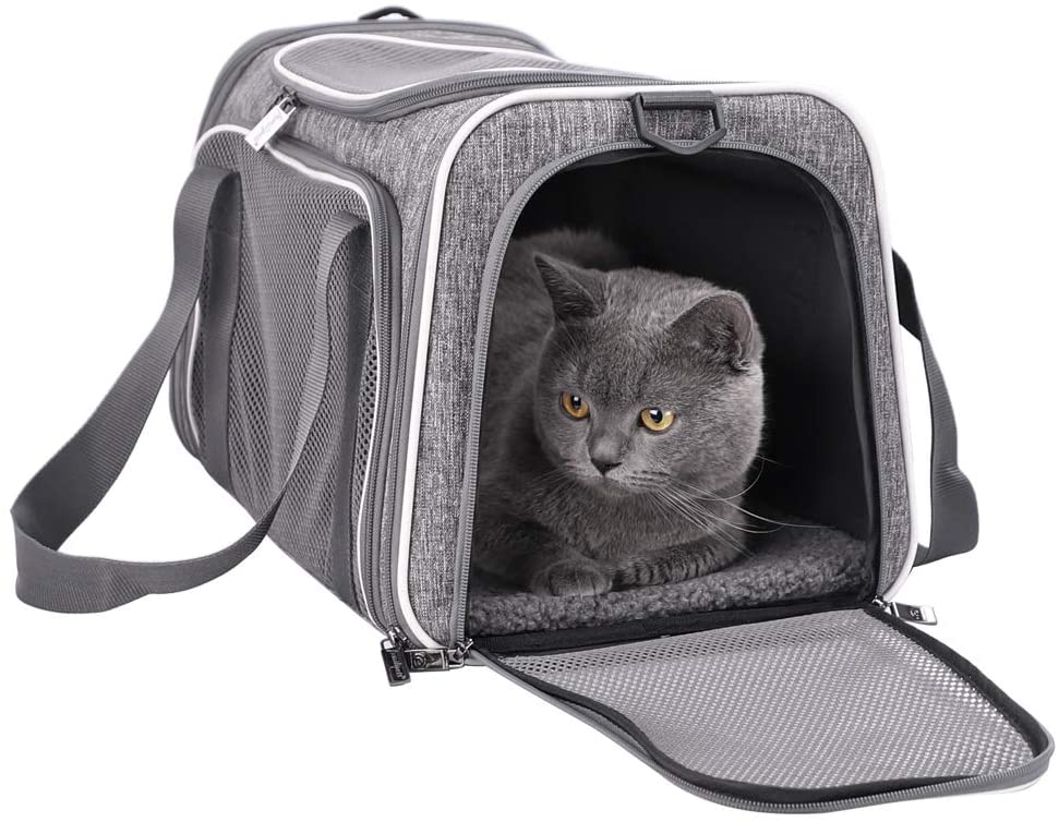 petisfam Pet Carrier for Medium Cats and Small Dogs. Easy to get cat in, use, Storage, Clean and Escape Proof
