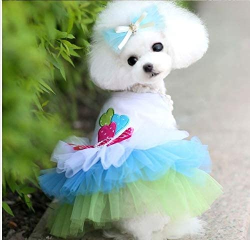 Pet Clothing Great Dog Clothes Dress Lace Princess Chihuahua Pet Clothing, Size:M(Pink) (Color : Blue)