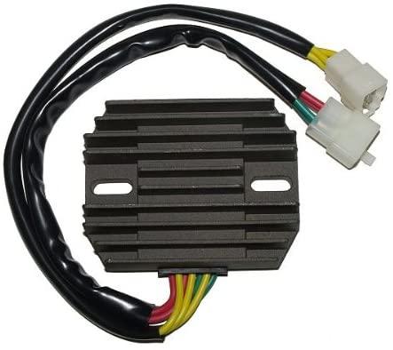 Motorize ElectroSport Charge Controller ESR 530