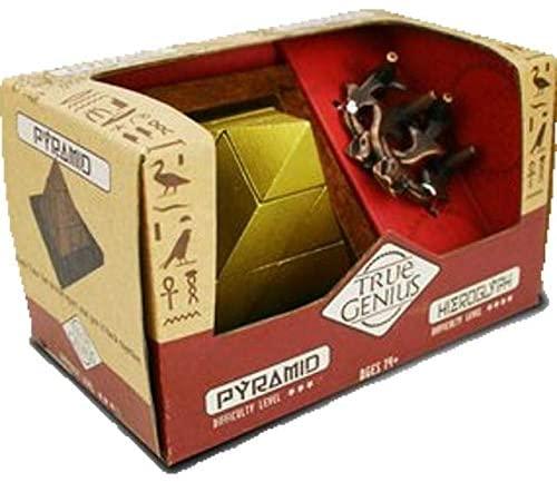 Pyramid & Hieroglyph Combo, True Genius - Disentanglement Puzzles, Brain teasers, Adult Puzzle