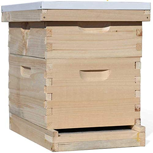 Busy Bees Amish Made in USA Complete 8 Frame Langstroth Beehive Includes Frames and Foundations (1 Deep, 1 Medium)