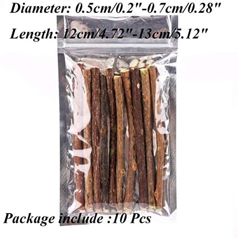 Cat Toys - 20pcs Cat Cleaning Tooth Natural Catnip Pet Molar Toothpaste Stick Actinidia Fruit Silvervine Snack - Fiddle Guy Computed Axial Tomography Dog Vomit Play Retch Diddle