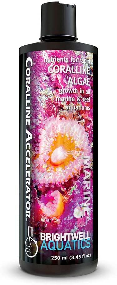 Brightwell Aquatics Coralline Accelerator - Liquid Nutrient Supplement for Coralline Algae Growth in Marine Reef Aquariums