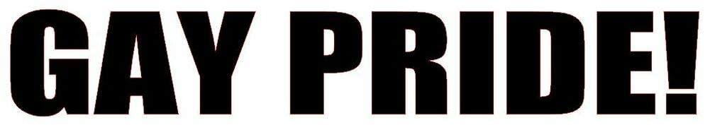 Tamengi Gay Pride! Vinyl Decal Sticker Car Window Wall Bumper Funny Joke Prank Love LGBT
