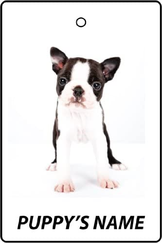 Personalized Boston Terrier Puppy Car Air Freshener
