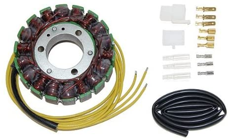 Motorize ElectroSport stator ESG030 for alternator