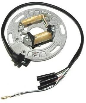 Motorize ElectroSport stator ESC1151 for alternator