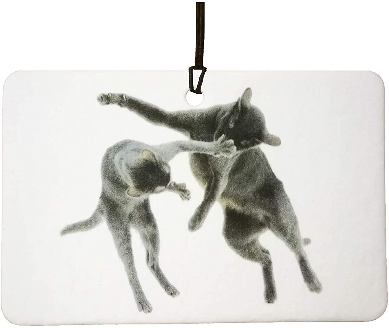 Cat Fight Car Air Freshener