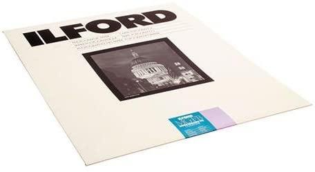 Ilford Multigrade FB Cooltone Black & White Enlarging Paper 16x20, 10 Sheets, Glossy