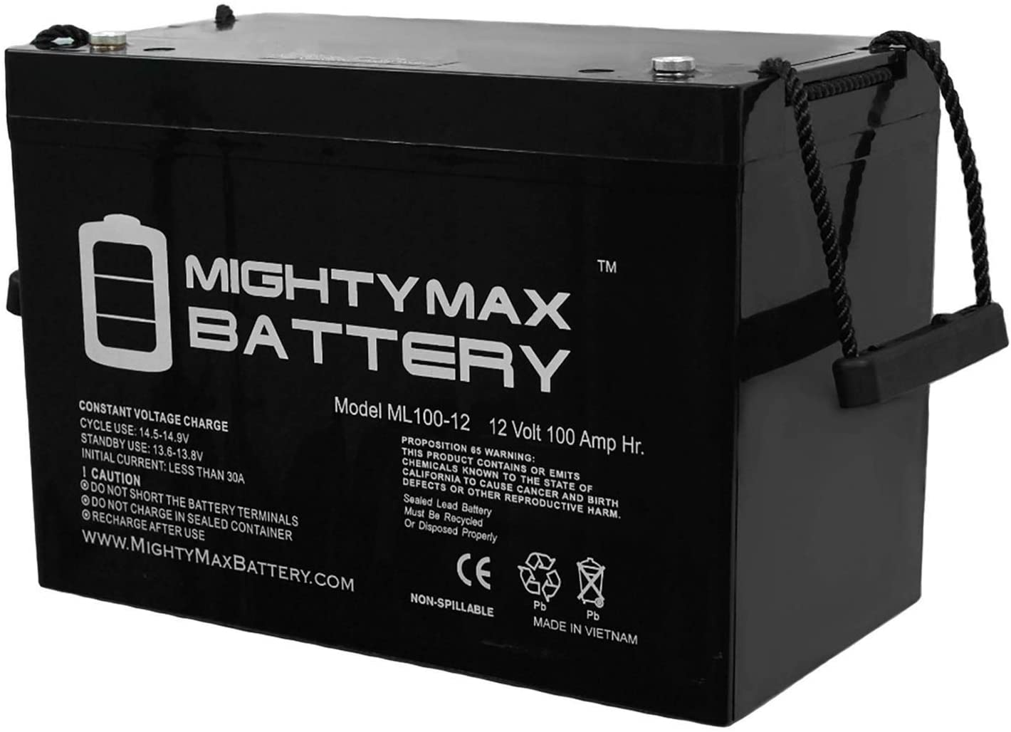 Mighty Max Battery 12V 100Ah SLA AGM Battery for SeaSense Box Power Station Brand Product