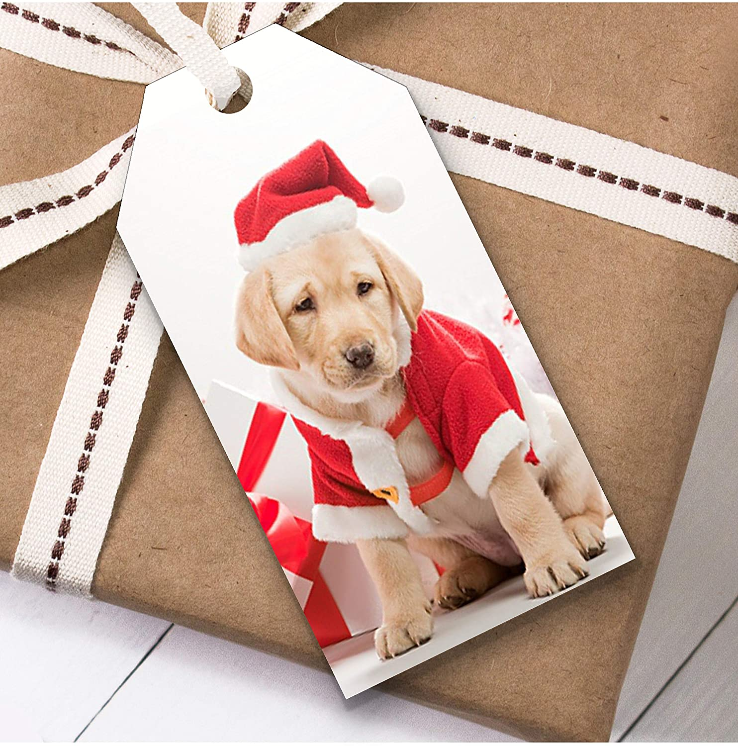 Dog in Gat Labrador Christmas Gift Tags (Present Favor Labels)