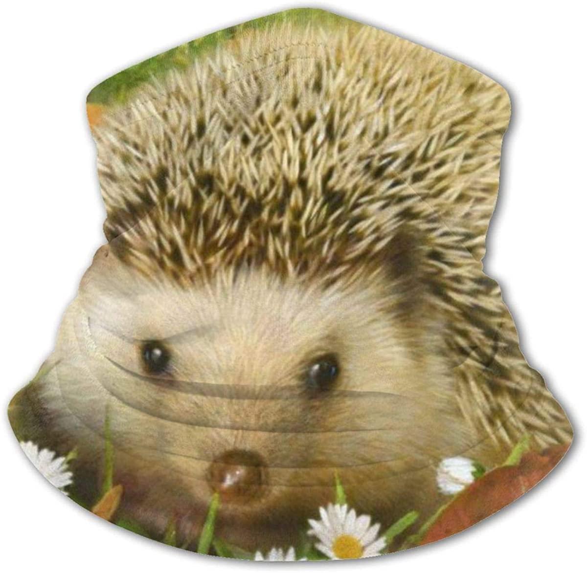 Hedgehog Headwear For Girls And Boys, Head Wrap, Neck Gaiter, Headband, Tenn Fishing Mask, Magic Scarf, Tube Mask, Face Bandana Mask For Camping Running Cycling