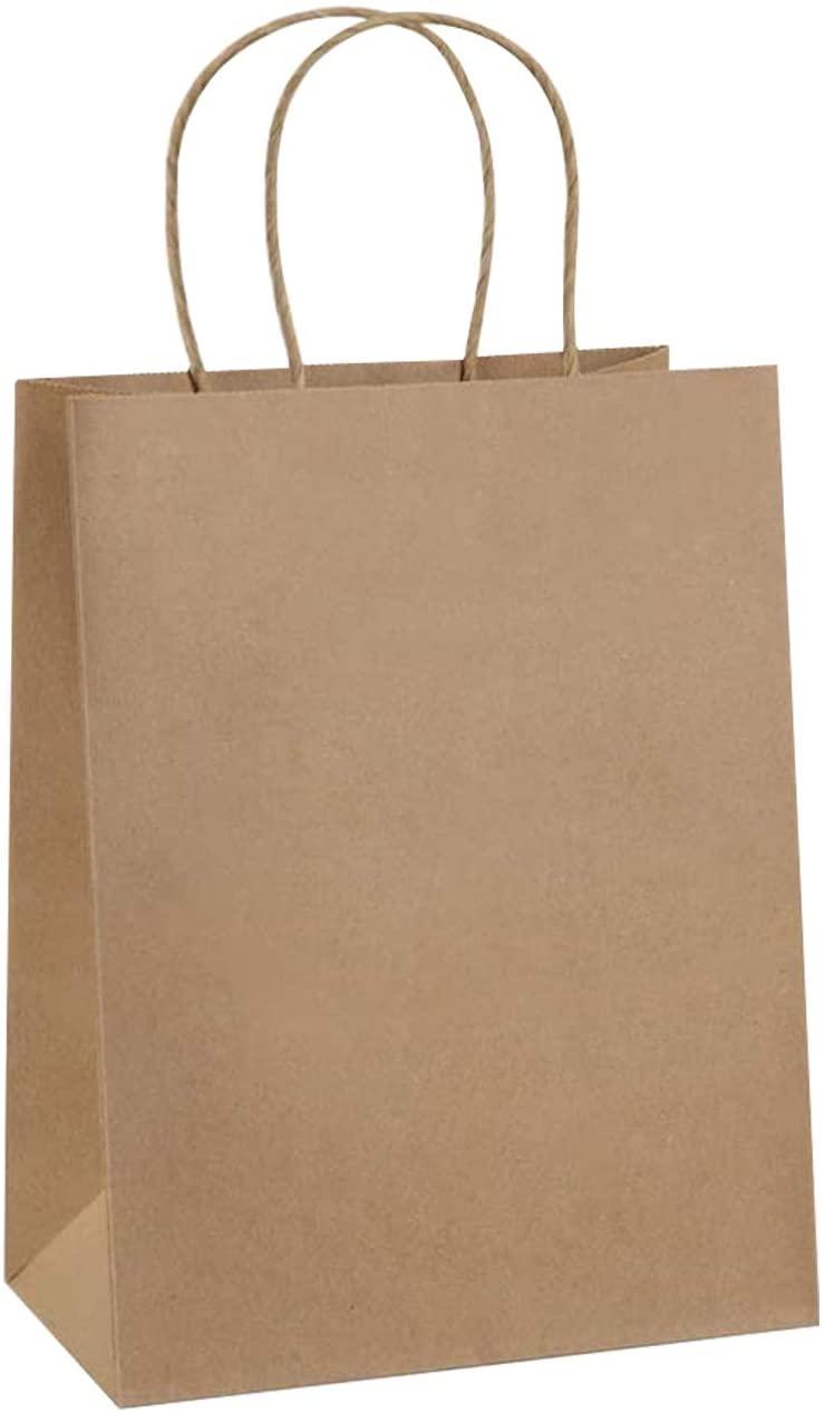 NBFU Nguyendesign 10pcs Brown Kraft Paper Bags Bulk with Handles 8