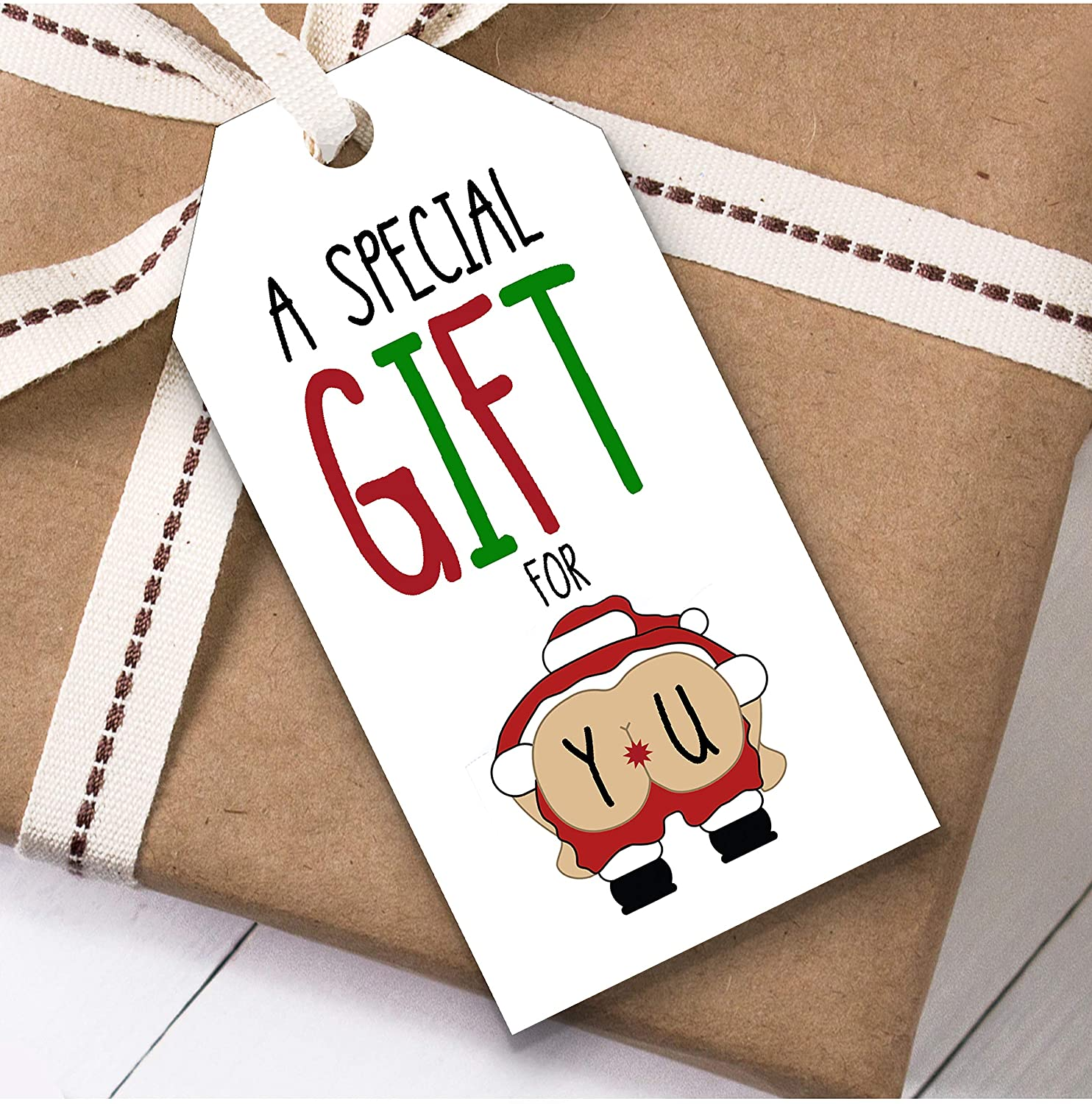 Funny Rude Special Gift for You Christmas Gift Tags (Present Favor Labels)
