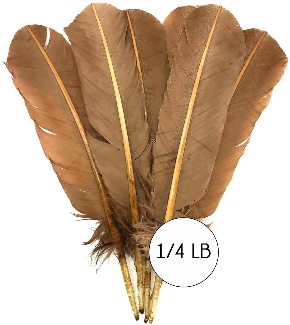 1/4 Lb - Light Brown Turkey Tom Rounds Secondary Wing Quill Wholesale Feathers (Bulk) Carnival, Fletching Craft Supply | Moonlight Feather