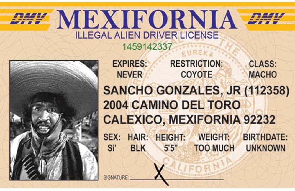 Signs 4 Fun Nmidf Illegal Alien's Driver's License