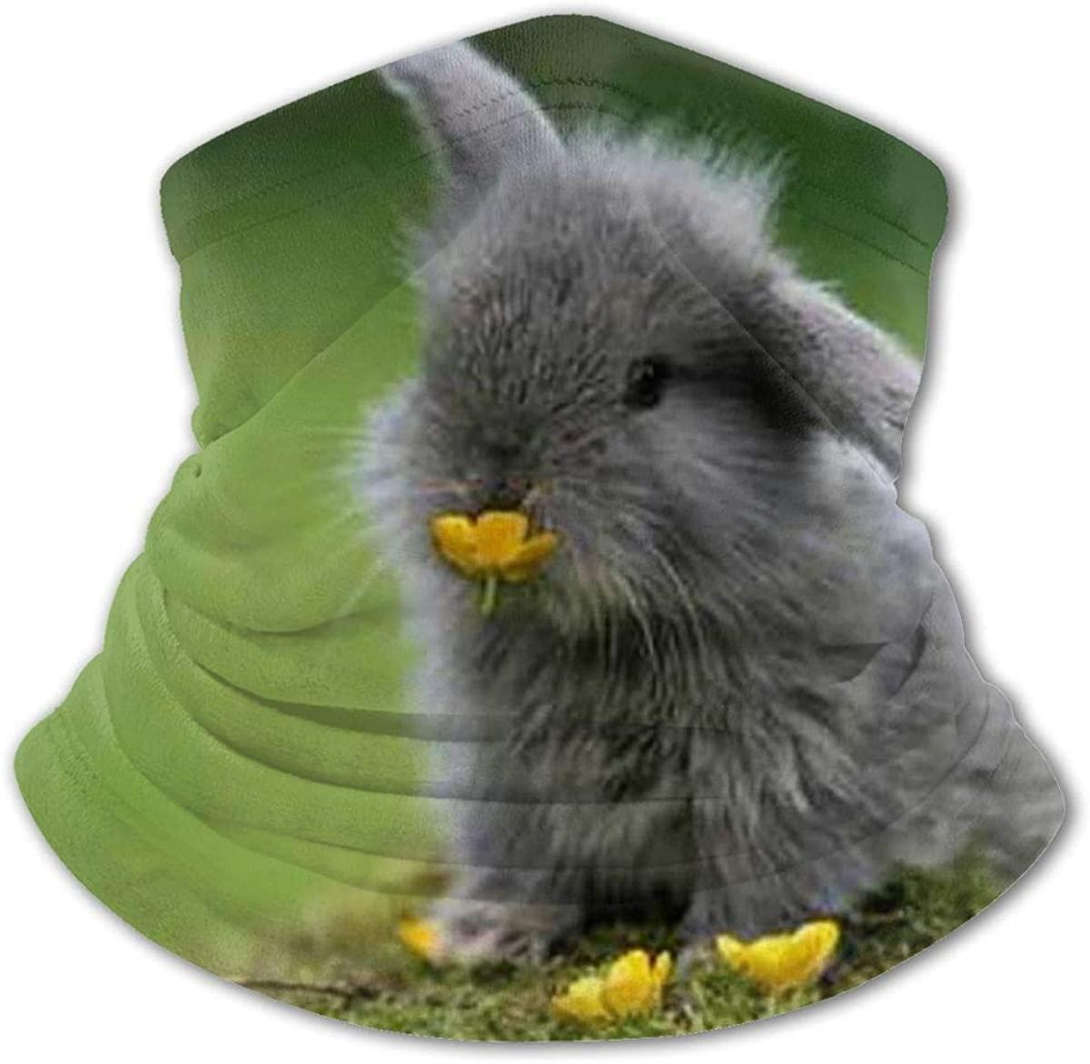 Cute Bunny Eating Flower Headwear For Girls And Boys, Head Wrap, Neck Gaiter, Headband, Tenn Fishing Mask, Magic Scarf, Tube Mask, Face Bandana Mask For Camping Running Cycling