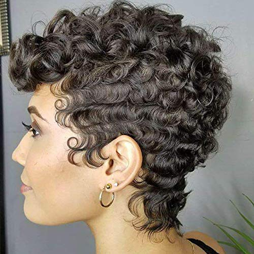 Naseily Afro Curly Synthetic Wigs For Black Women Short Curly Wigs For Black Women African American Short Wigs