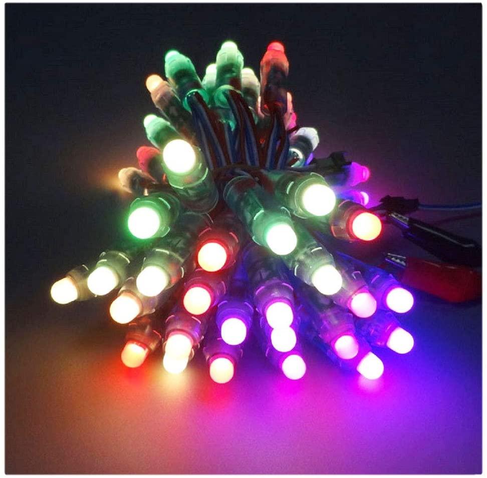 VISDOLL WS2811 Pixel LED String Lights DC 12V, Waterproof 50pcs 12mm Diffuesed Digital Led RGB Rope Lights Individually Addressable for Xmas Decoration