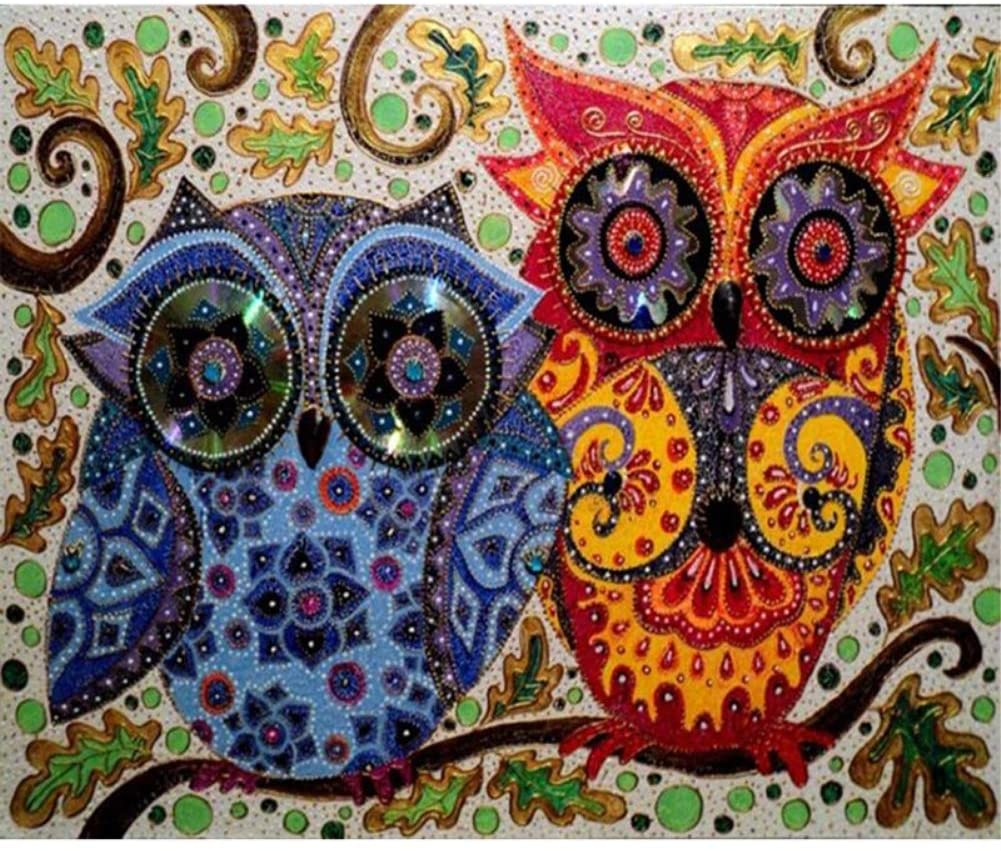 TianMaiGeLun Full Drill 5d Diamond Painting Kits Cross Stitch Craft Kit New DIY Kits for Kids Adults Paint by Number Kits (Owl, 25x30cm, Round Drill)