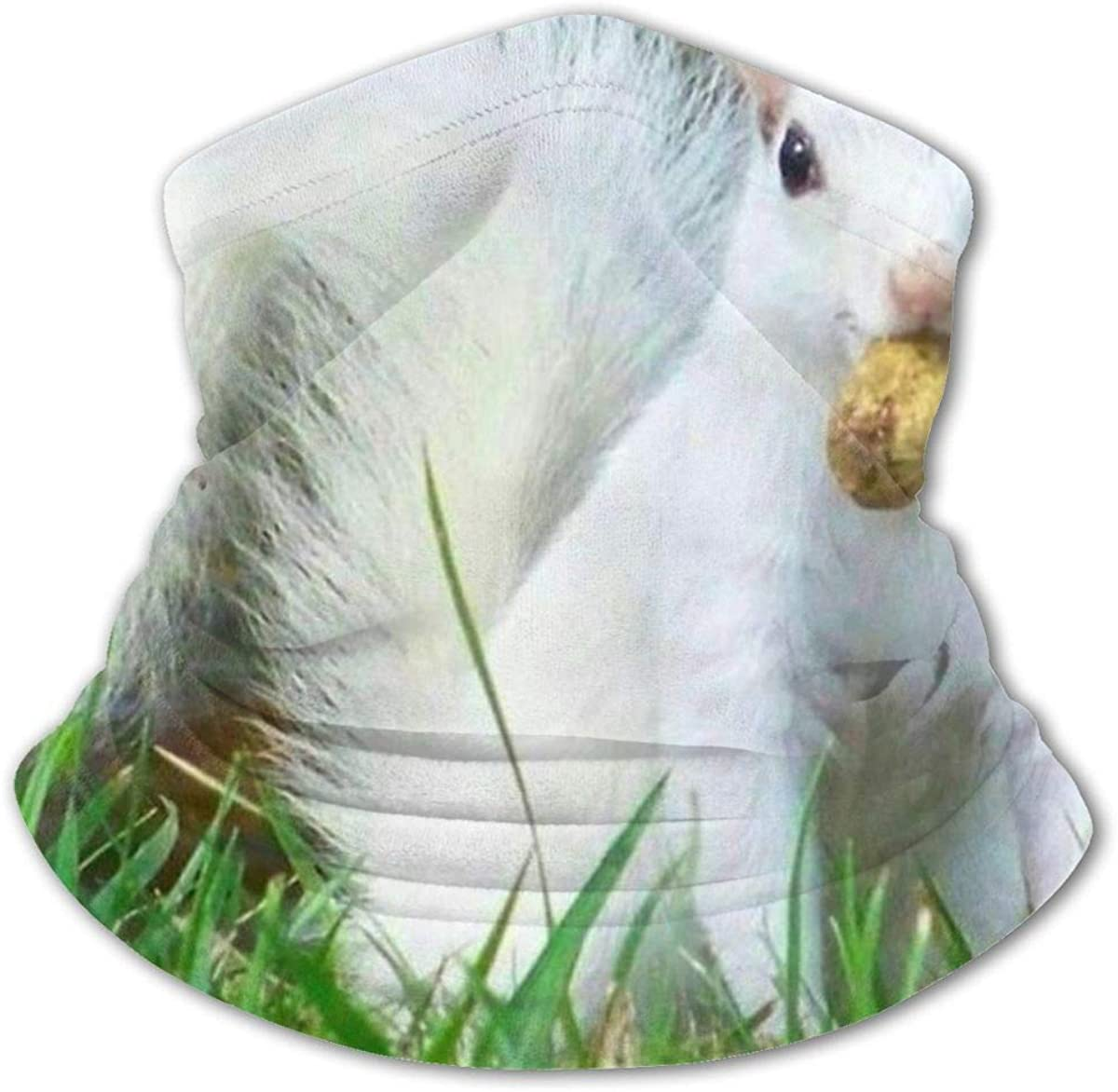 White Squirrels In Illinois Headwear For Girls And Boys, Head Wrap, Neck Gaiter, Headband, Tenn Fishing Mask, Magic Scarf, Tube Mask, Face Bandana Mask For Camping Running Cycling