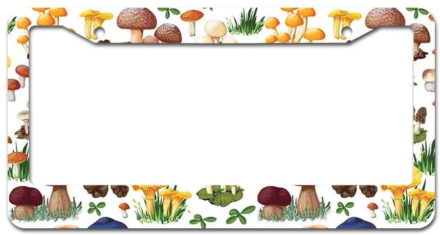 DKISEE Abstract Pattern with Types of Mushrooms License Plate Frame Aluminum Car License Plate Covers with 2 Holes 12