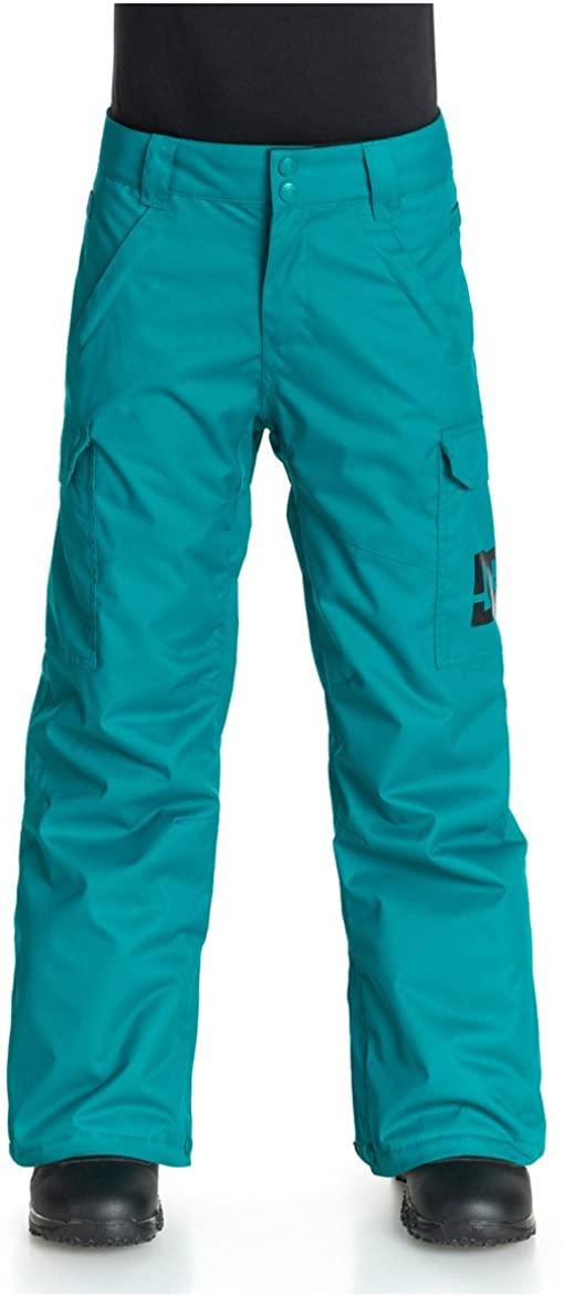 DC Boys Big Youth Banshee Insulated Snowboard Pants