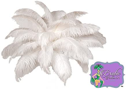 Special Sale 50 Pcs White Ostrich Feathers with Gentle hints of Cream. USA Store by ExoticFeathersLA
