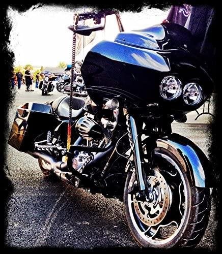 Snake Skinz GetBack Biker Whip with Custom Color Combo