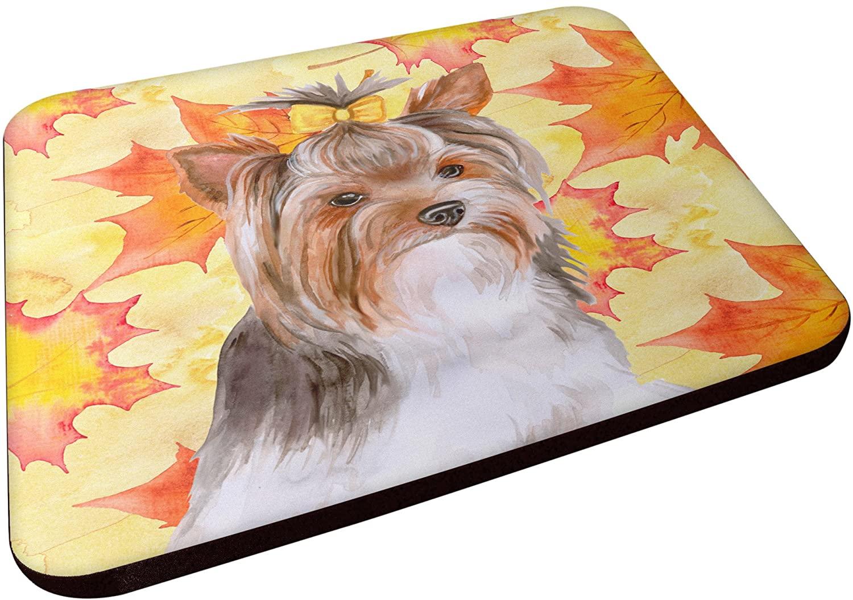Caroline's Treasures Yorkshire Terrier #2 Fall Decorative coasters, Multicolor