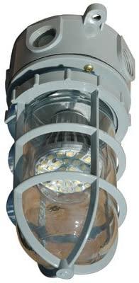 Hazardous Area LED Strobe Light - Chemical/Corrosion Resistant - 10 Watts - Non-Metallic - Class 1
