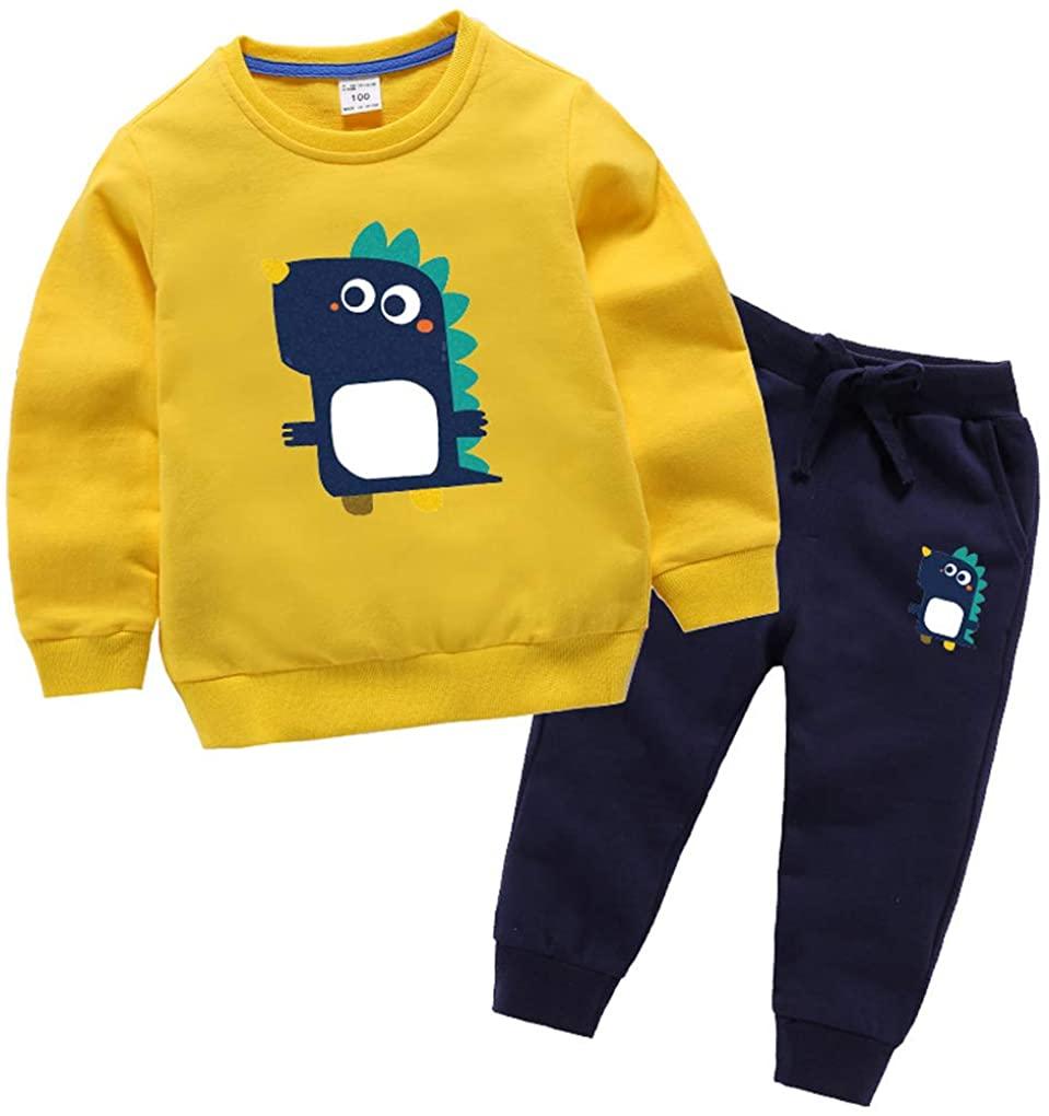 Baby Toddler Boys Girls Kids 2 Piece Dinosaur Print Sweatshirt Pants Outfits Set